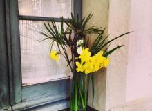 flor-finestra-ok
